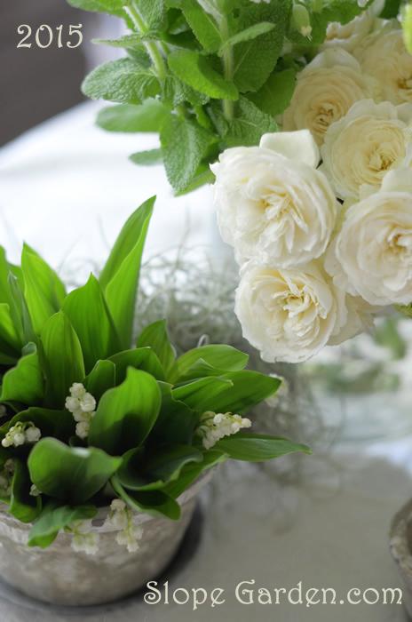 sg_white.flowers700